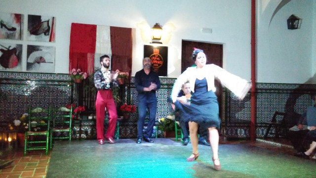 Flamenco at La Casa de Flemenco. (Wish we could have taken photos when she had on the colorful dress with long heavy train.)